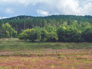 Spoed Foto op Canvas Khaki landscape in the mountains
