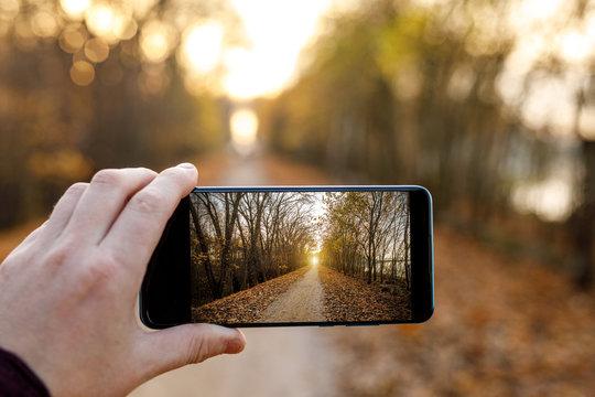 Make an autumn photo on a mobile phone.