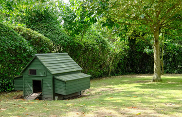 Small chicken coop seen erected within a domestic garden as seen in mid summer.