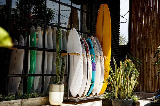 Surf shop. Many multi-colored surfboards in a row.