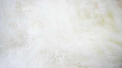 white fabric background, white cloth and soft white fur Wall mural