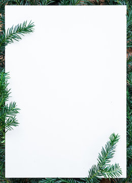 copy space, blank paper on wooden table with fir green fir,  branches as a frame, christmas decoration, winter, background