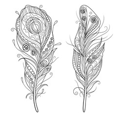 Set of decorative stylized outline feathers on white background. Vector illustration doodling and zentangle style
