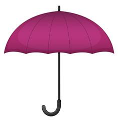 Purple umbrella on white background