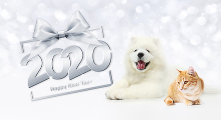 Fotomurales - gift card, dog and cat 2020 happy new year text on package frame with silver ribbon bow on christmas lights background