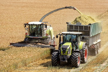 Claas Forage Harvester Running beside Tractor with Fliegl Trailer, Trelleborg and Goodyear tires, Germany, Lower Saxony, June 2018, Editorial
