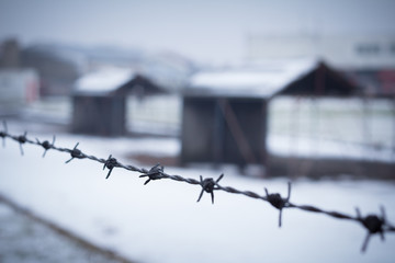 barbed wire closeup with detention camp in background