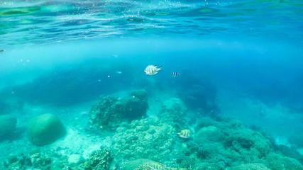 宮古島の美しい海と風