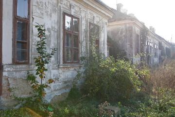 Wall Mural - Verlassene Arbeiterhäuser eines ehemaligen Ziegelwerkes in Niederösterreich