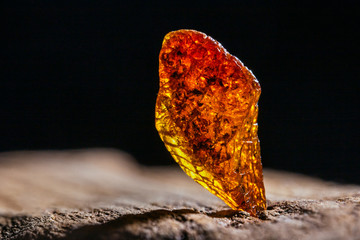 Natural amber. A piece of yellow transparent natural amber on large piece of dark stoned wood.