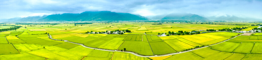 Foto op Plexiglas Lime groen Aerial view of Beautiful Rice Fields in taitung . Taiwan.