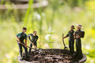 Miniature farmers to grow the cannabis in the garden.