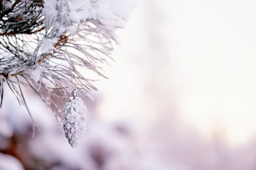 Branch in the snow with cone. Winter background with pine cones.Christmas decoration or interior design background.