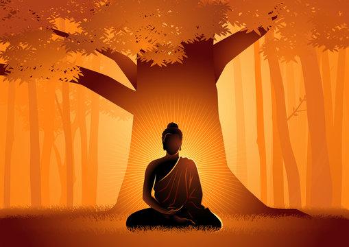 Siddhartha Gautama enlightened under Bodhi tree