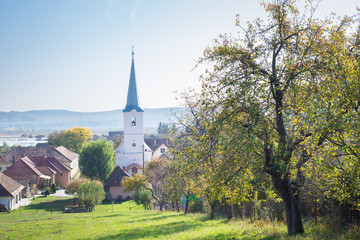 Aluminium Prints Eastern Europe Church and tree with autumn leaf colors in a village in Transylvania, Romania