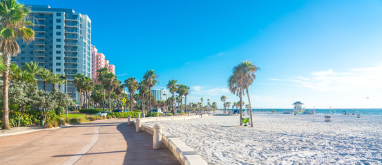 Spoed Fotobehang Bomen Clearwater beach with beautiful white sand in Florida USA