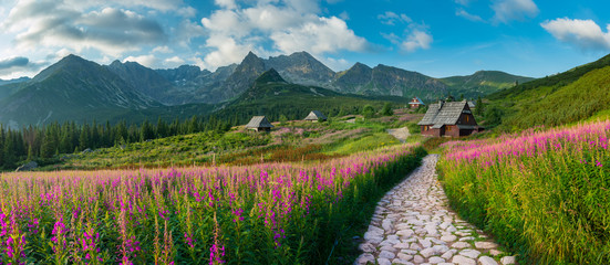 Photo sur Aluminium Route dans la forêt mountain landscape, Tatra mountains panorama, Poland colorful flowers and cottages in Gasienicowa valley (Hala Gasienicowa), summer
