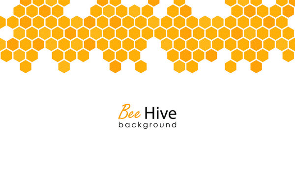 Honeycomb background. Hexagon beehive design isolated. Vector illustration