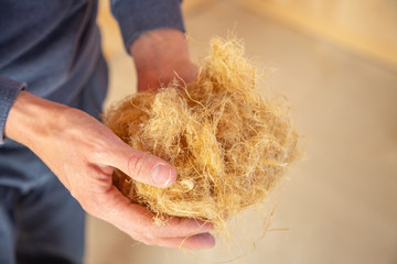 Hand of a worker holding hemp wool, an ecological insulation material which is environmentally friendly and completely recyclable