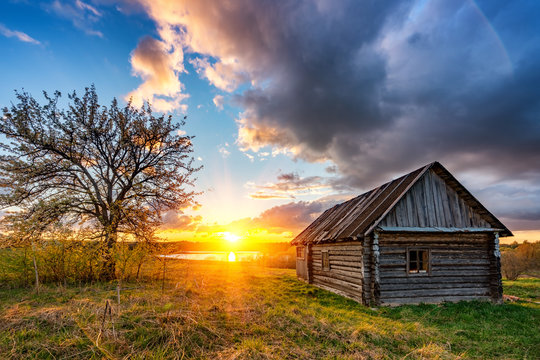 Old wooden hut and lonely tree at sunset in countryside at spring
