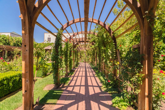 Beautiful garden wedding venue with a wooden arbor wrapped with vibrant vines