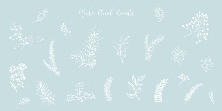 Vector Christmas illustration collection of floral fir tree branches on blue snowy craft background. Winter design. Merry Christmas and Happy New Year!