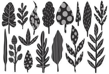 Nature plant abstract naive style.Botanical hand drawing.
