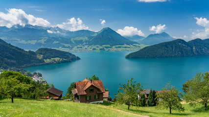 Photo sur Aluminium Alpes Switzerland, Panoramic view on green Alps and lake Lucerne near Vitznau.