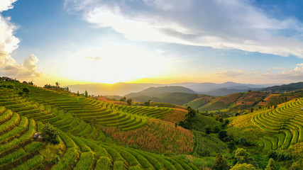 Printed roller blinds Rice fields Panorama Aerial view Sunset scene of Pa Bong Piang terraced rice fields, Mae Chaem, Chiang Mai Thailand