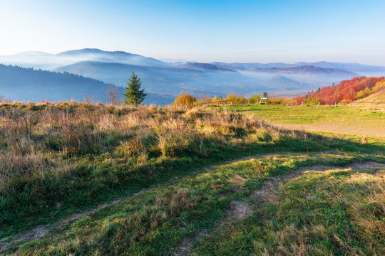 beautiful countryside in the morning. path through meadow in weathered grass. trees on the hills in colorful foliage. distant mountains in fog rising above the valley. blue cloudless sky