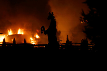 A horse statue is silhouetted by a burning structure during the wind-driven Kincade Fire in Windsor, California