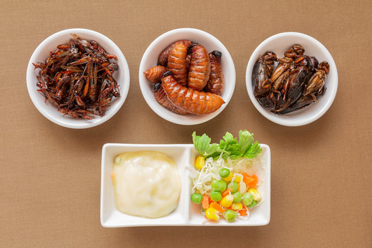 Insect food for fried Worm, Cricket and Grasshopper with vegetable salad in the white bowl. Healthy meal high protein diet concept. Closeup, Selective focus.
