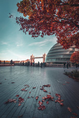 Autumn colours at the city hall in London