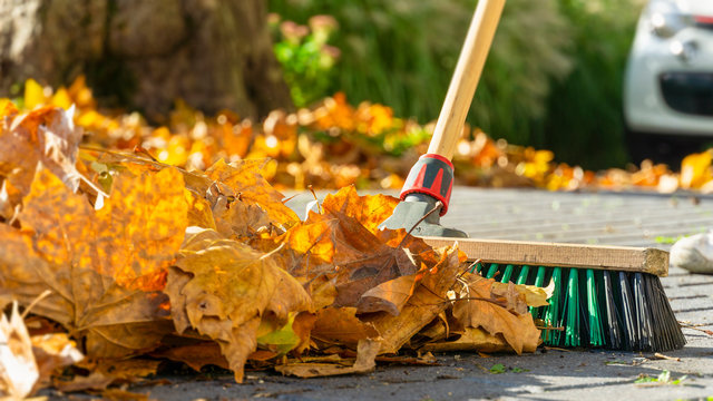 Sweep foliage: when the walkway needs to be cleared