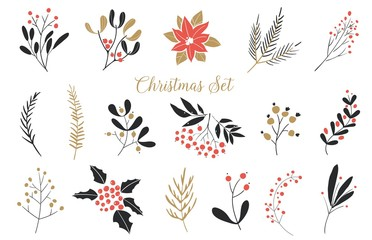 Elegant Christmas Graphic Set. Set of plants with flowers, spruce branches, leaves and berries. Hand drawn design elements.