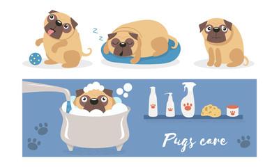 Cute pug bathes in a foam bath. Vector illustration.