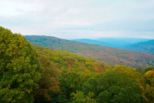 View of the Ozark National Forest along the Boston Mountains Scenic Loop byway in Arkansas