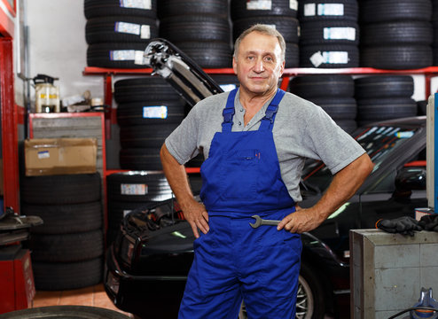 Confident professional mechanic
