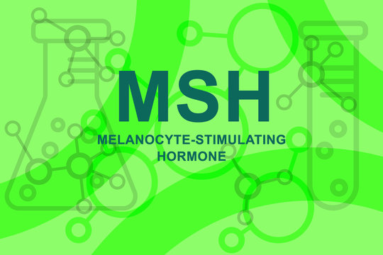 Text sign showing printed words melanocyte-stimulating hormone MSH