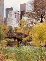 Fototapeten New York Central Park in the autumn, New York City, USA.