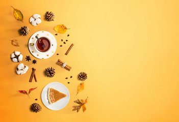 Pumpkin pie with cinnamon tea - flat lay
