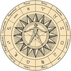 Vector circle of the Zodiac signs in retro style with hand-drawn Sun and human figure like Vitruvian man by Leonardo Da Vinci. Horoscope circle with twelve symbols for astrological forecasts