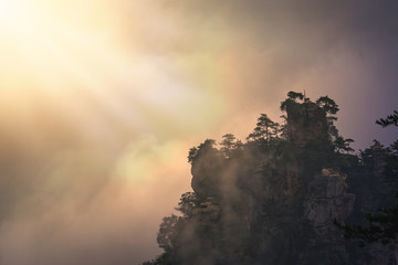 Printed roller blinds Roe Sun shining on a t ree growing on top of the stone pillar in Tianzi mountains in Zhangjiajie National park