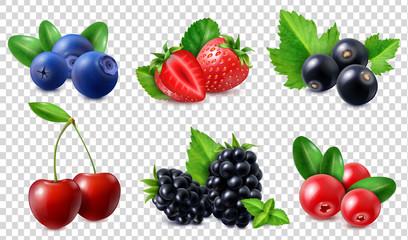 Realistic Berries Set Fototapete