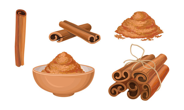 Cinnamon Sticks Vector Set. Pile of Milled Seeds and Seeds Poured in Bowl