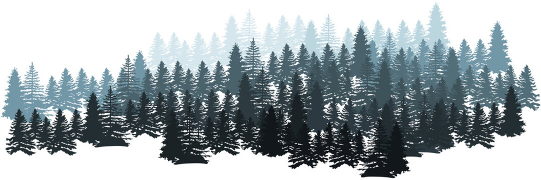 Forest Silhouette Landscape. Coniferous Forest Panorama. Winter Christmas Forest of fir trees silhouette. Layered trees background. Vector