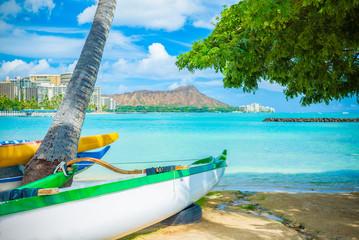 ヤシの木の下からみるハワイのオアフ島のダイヤモンドヘッドの風景, A Landscape with A Palm Tree and Diamond Head in Oahu in Hawaii