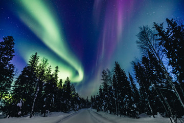 Foto op Textielframe Noorderlicht Colorful polar arctic Northern lights Aurora Borealis activity in snow winter forest in Finland