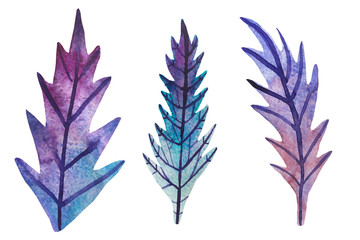 Watercolor leaves, plants, wedding invitations. Watercolor leaves blue and violet  set.