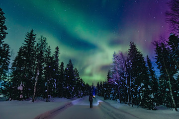 Foto op Plexiglas Noorderlicht Colorful polar arctic Northern lights Aurora Borealis activity with one person in snow winter forest in Finland